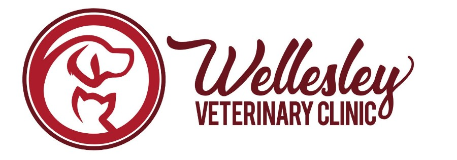 Wellesley Veterinary Clinic